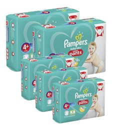 455 Couches Pampers Baby Dry Pants taille 4+ sur Les Looloos