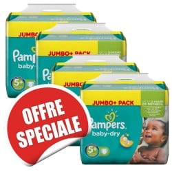 504 Couches Pampers Baby Dry taille 5+ sur Les Looloos