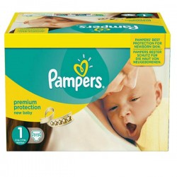 336 Couches Pampers Premium Protection taille 1 sur Les Looloos